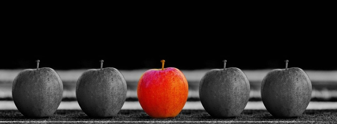 Back to Basics – Focus on Product Excellence First