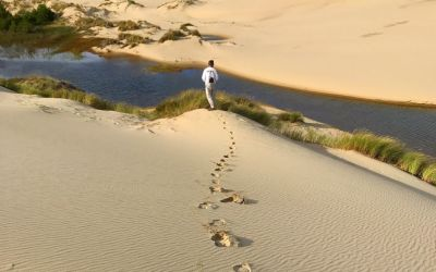 """""""Do not go where the path may lead, go instead where there is no path and leave a trail."""" – Ralph Waldo Emerson"""
