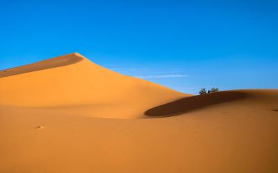"""Sunshine all the time makes a desert."" – Arab Proverb"